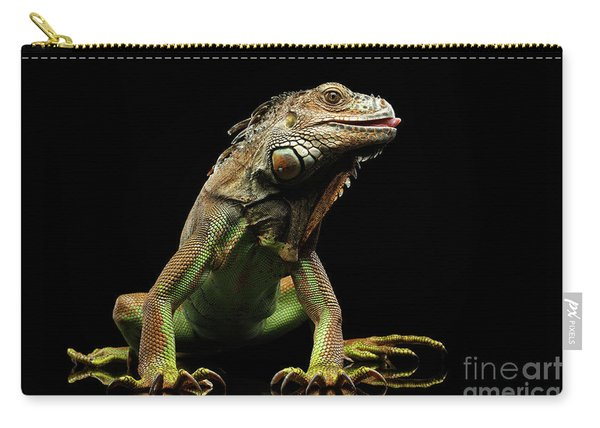 Closeup Green Iguana Isolated On Black Background Carry-all Pouch