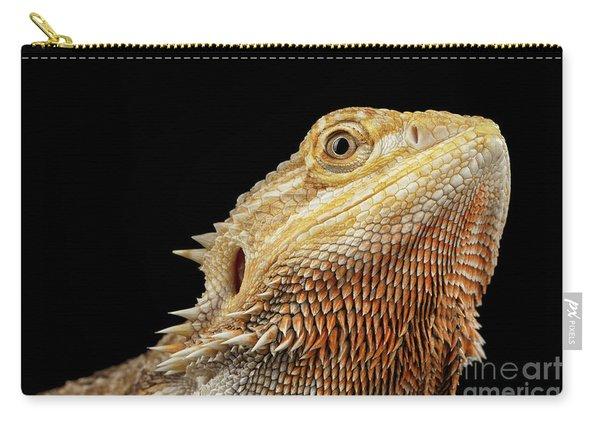 Closeup Head Of Bearded Dragon Llizard, Agama, Isolated Black Background Carry-all Pouch