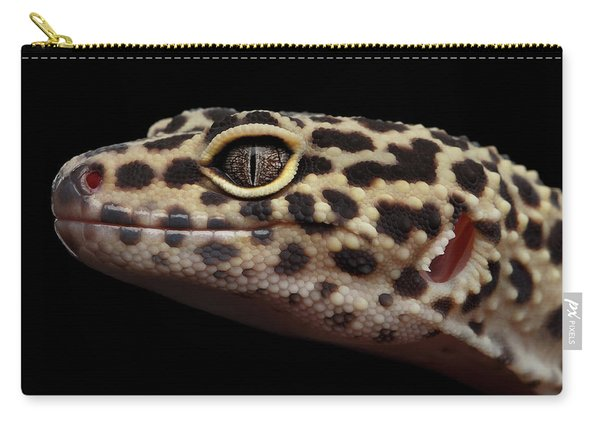Closeup Head Of Leopard Gecko Eublepharis Macularius Isolated On Black Background Carry-all Pouch