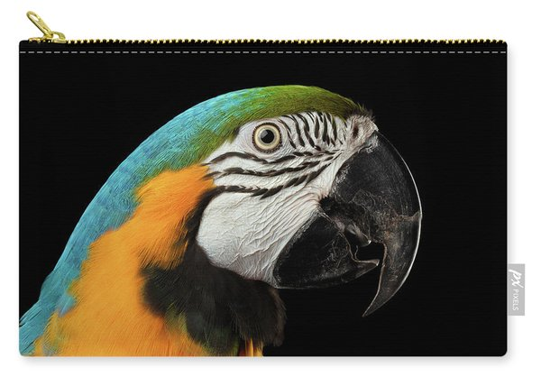 Carry-all Pouch featuring the photograph Closeup Portrait Of A Blue And Yellow Macaw Parrot Face Isolated On Black Background by Sergey Taran