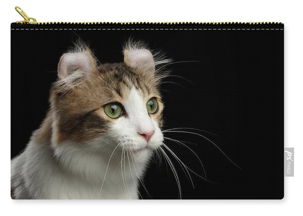 Closeup Portrait Of American Curl Cat On Black Isolated Background Carry-all Pouch