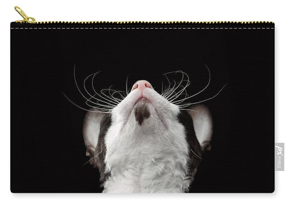 Closeup Portrait Of Cornish Rex Looking Up Isolated On Black  Carry-all Pouch