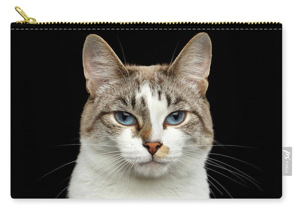Closeup Portrait Of Face White Cat, Blue Eyes Isolated Black Background Carry-all Pouch