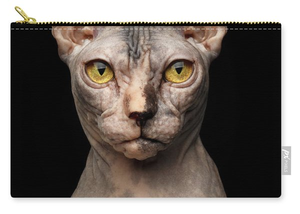 Closeup Portrait Of Grumpy Sphynx Cat, Front View, Black Isolate Carry-all Pouch