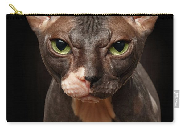 Closeup Portrait Of Grumpy Sphynx Cat Front View On Black  Carry-all Pouch