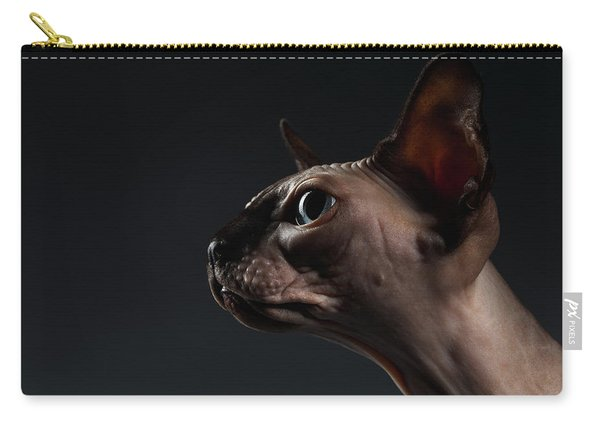 Closeup Portrait Of Sphynx Cat In Profile View On Black  Carry-all Pouch
