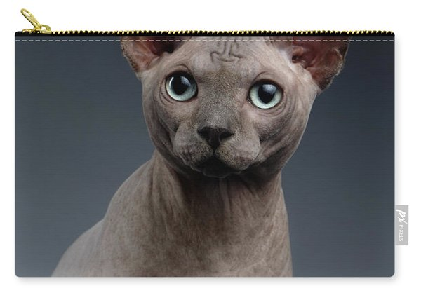 Carry-all Pouch featuring the photograph Closeup Portrait Of Sphynx Cat Looking In Camera On Dark  by Sergey Taran