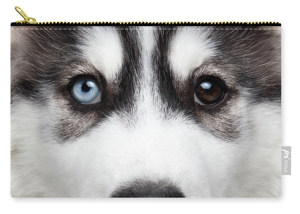 Closeup Siberian Husky Puppy Different Eyes Carry-all Pouch