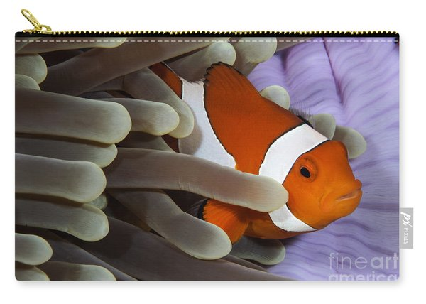 Clown Anemonefish, Indonesia Carry-all Pouch