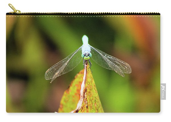 Clown Face Dragonfly Carry-all Pouch