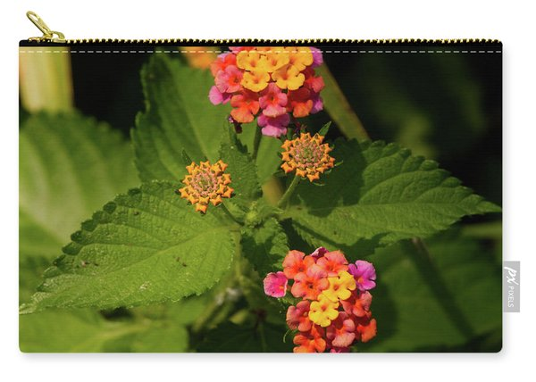 Cluster Of Lantana Flowers Carry-all Pouch