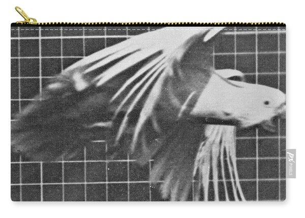 Cockatoo In Flight Carry-all Pouch