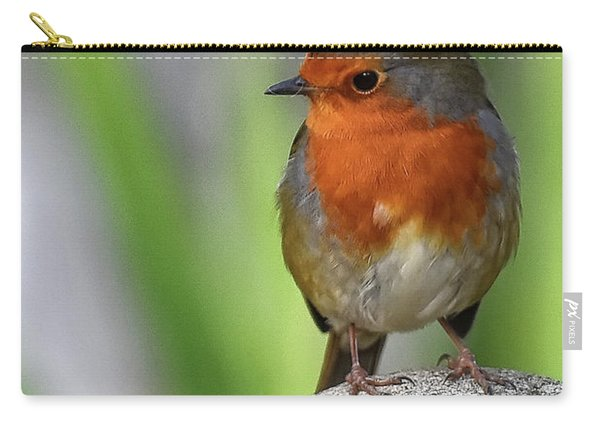 Cocky Robin Carry-all Pouch