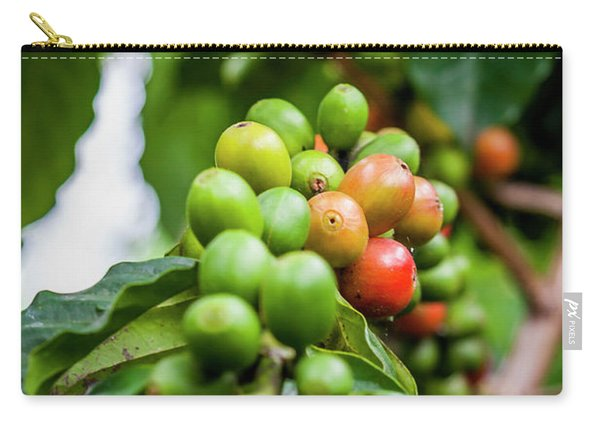 Coffee Plant Carry-all Pouch