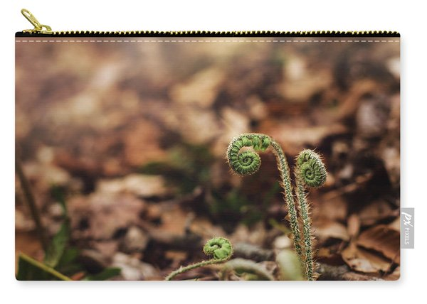 Coiled Fern Among Leaves On Forest Floor Carry-all Pouch
