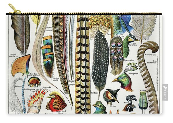 Collection Of Different Plume Types Carry-all Pouch