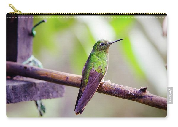 Colombian Hummingbird Carry-all Pouch