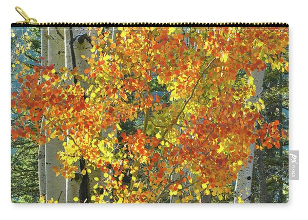 Colorful Aspen Along Million Dollar Highway Carry-all Pouch