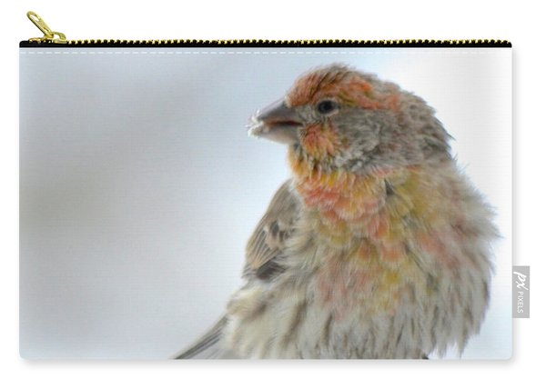 Colorful Finch Eating Breakfast Carry-all Pouch