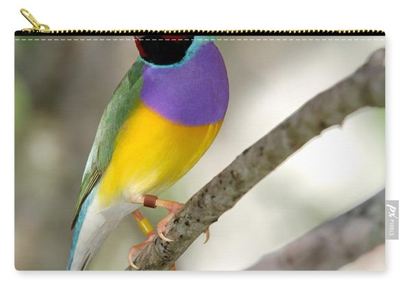 Colorful Gouldian Finch Carry-all Pouch