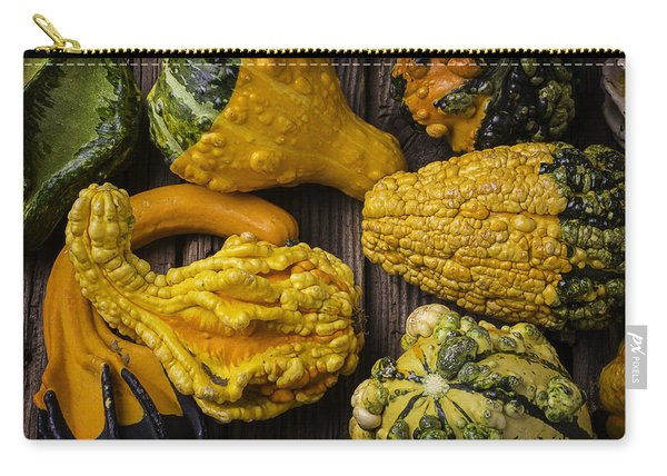 Colorful Gourds Carry-all Pouch