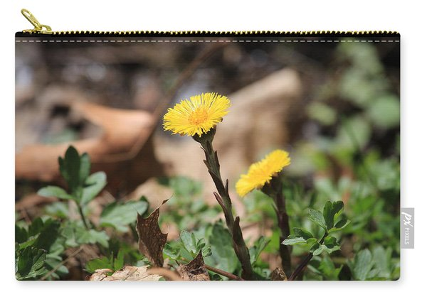 Coltsfoot Carry-all Pouch