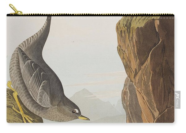 Columbian Water Ouzel Or Arctic Water Ouzel Carry-all Pouch