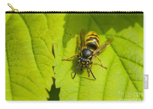 Common Wasp Carry-all Pouch