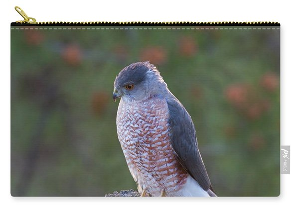 Coopers Hawk Perched Carry-all Pouch
