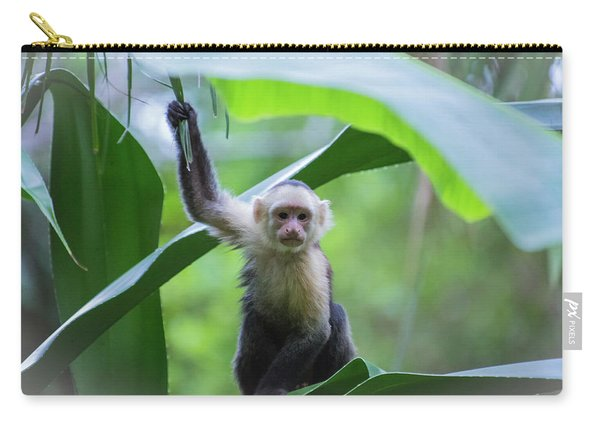 Costa Rica Monkeys 1 Carry-all Pouch