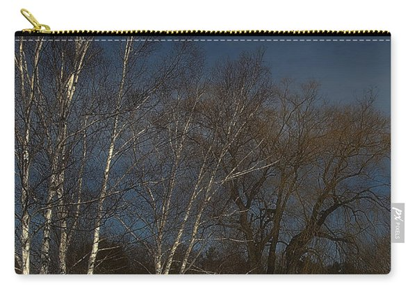 Country Roadside Birch Carry-all Pouch