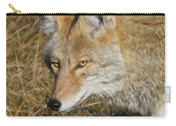 Coyote In The Wild Carry-all Pouch