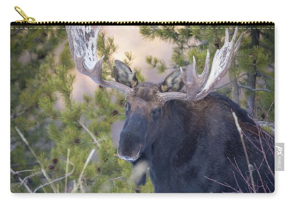 Creekside  Carry-all Pouch