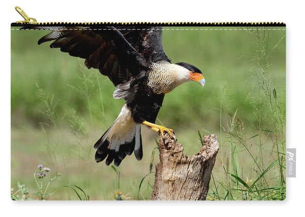 Crested Caracara Landing Carry-all Pouch