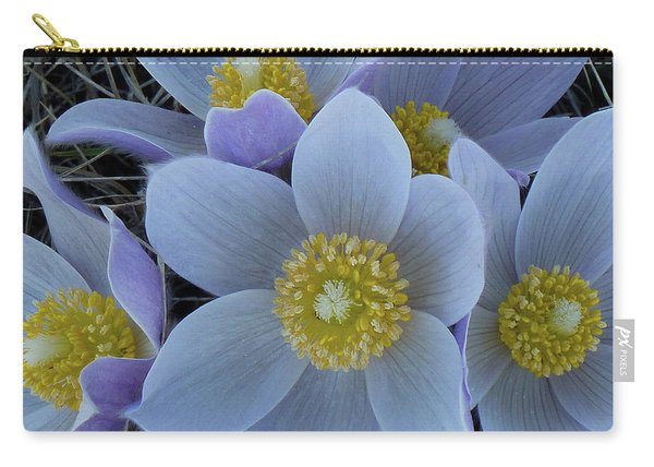Crocus Blossoms Carry-all Pouch