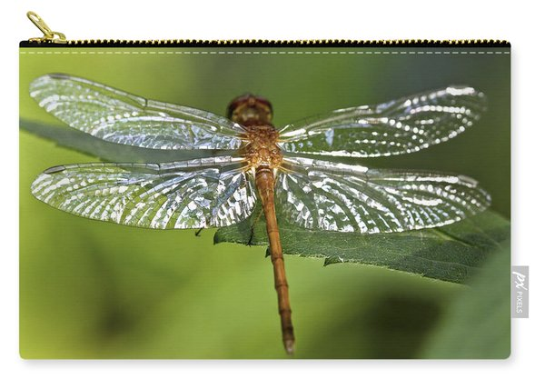 Crystal Wings Carry-all Pouch