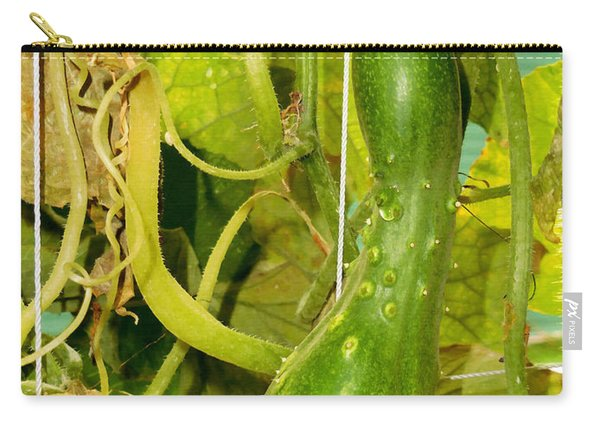 Cucumber On Tree In The Garden 2 Carry-all Pouch
