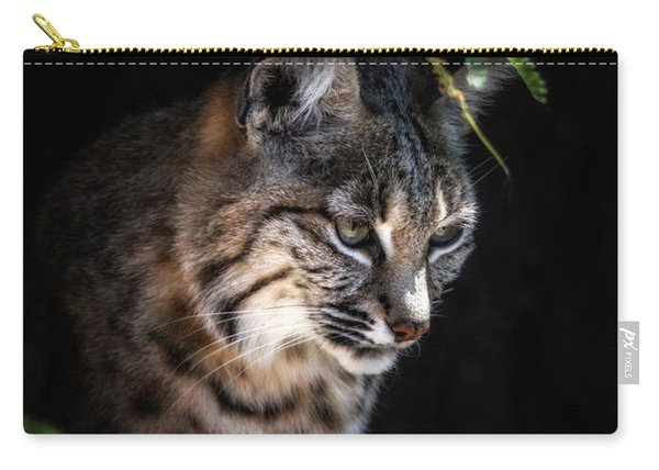 Curious Bobcat Carry-all Pouch