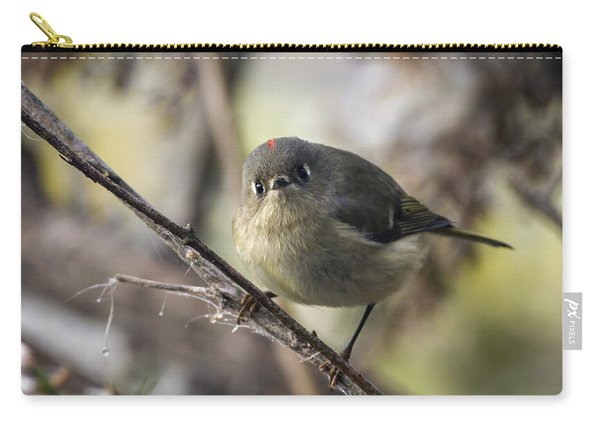 Curious Ruby-crowned Kinglet Carry-all Pouch