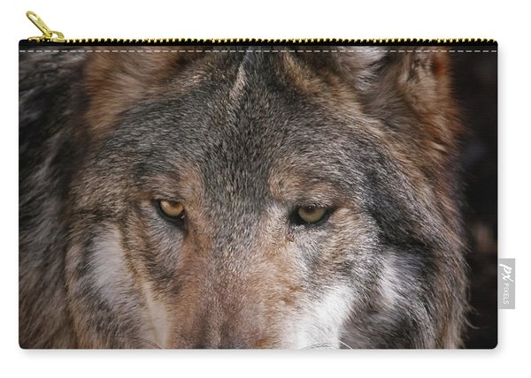 Curious Sancho Carry-all Pouch