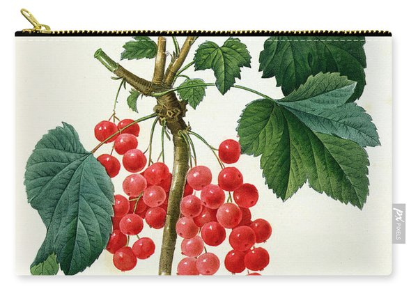 Currants  Red Carry-all Pouch