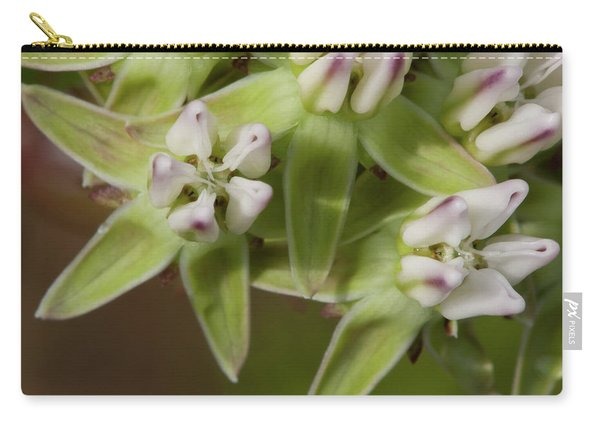 Curtiss' Milkweed #4 Carry-all Pouch