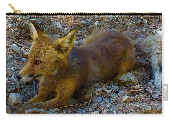 Carry-all Pouch featuring the photograph Cute Fox Friend  by Colette V Hera Guggenheim