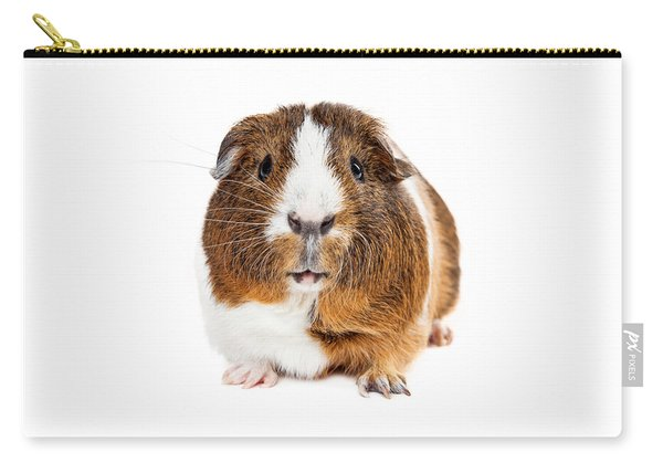 Cute Guinea Pig Looking Forward Carry-all Pouch