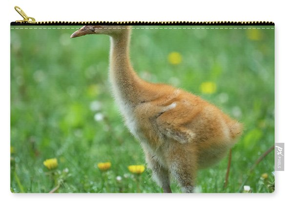 Cuteness Carry-all Pouch