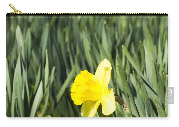Daffoldil - Arboretum - Madison Wisconsin Carry-all Pouch