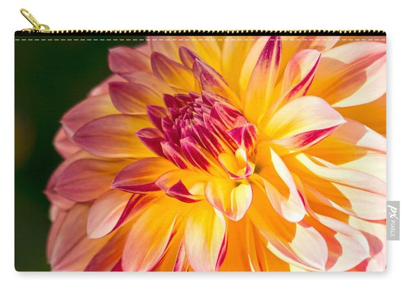 Dahlia Late Afternoon Radiance Carry-all Pouch
