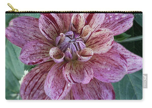 Dahlia 'nonette' Carry-all Pouch