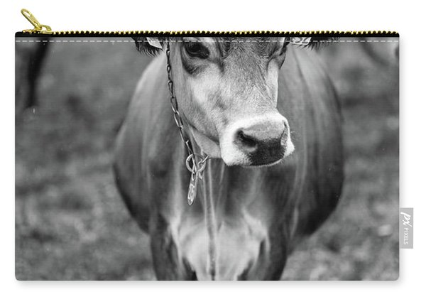 Dairy Cow On A Farm In Stowe Vermont Carry-all Pouch