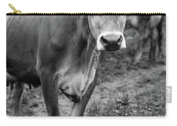 Dairy Cow Stowe Vermont Black And White Carry-all Pouch